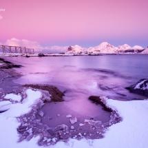 Lofoten-foto Tommy Andreassen-2261