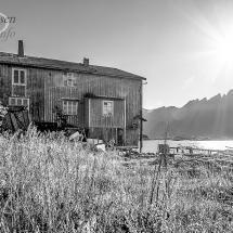 Lofoten-foto Tommy Andreassen-5673