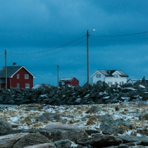 Røst © Tommy Andreassen-5425