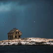 Røst © Tommy Andreassen-7062