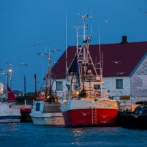 Røst © Tommy Andreassen-9754